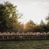 Outdoor reception farm table style