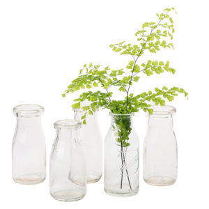 ALaCrate-Rentals-Glass-Milk-Bottle-S-Mult5-Vase-Centerpiece