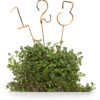 ALaCrate-Rentals-Table-Numbers_Brass_HumanCrafted-MadeInWisconsin