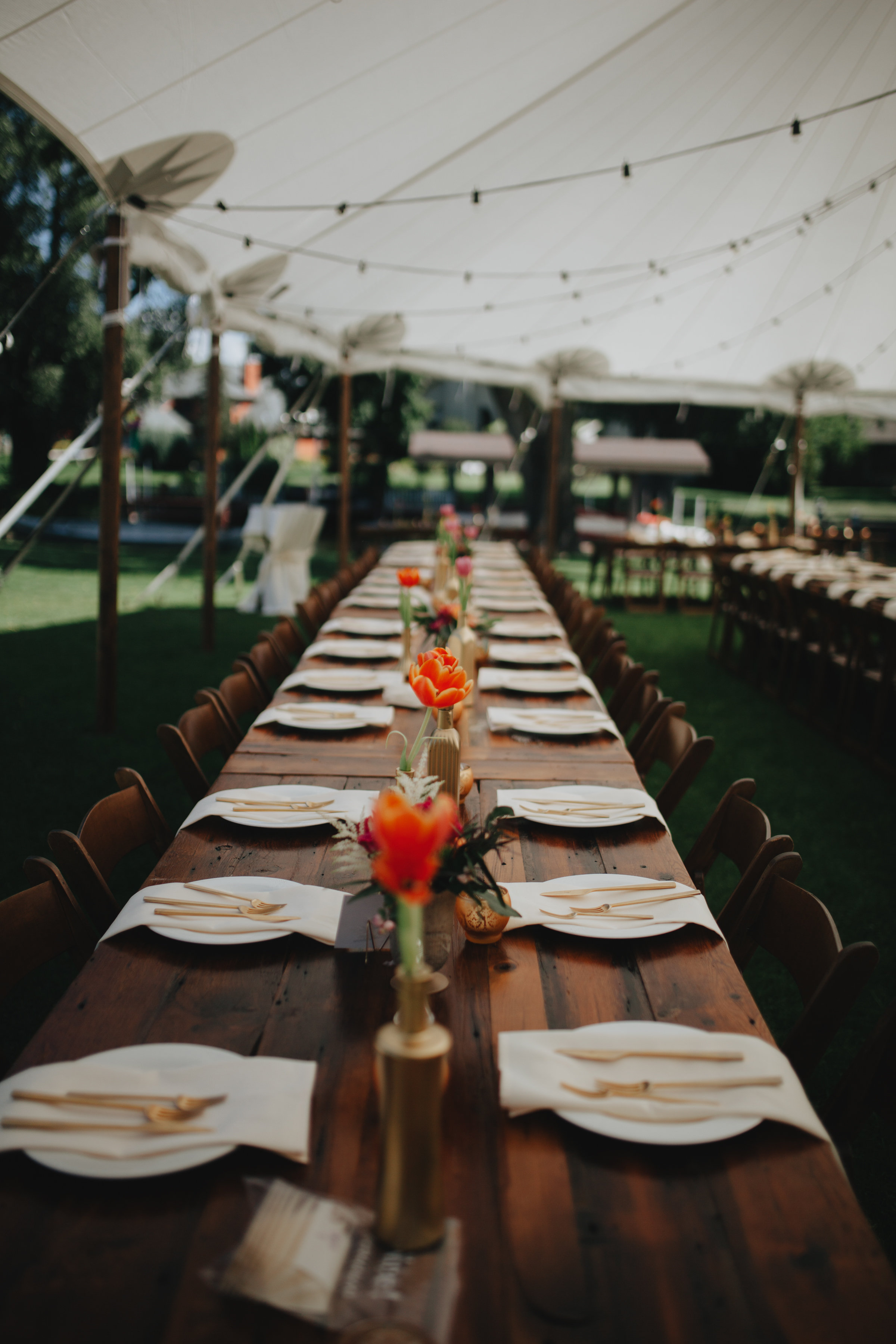 ALaCrateRentals-Audre-Rae-Photography-Harvest-Table-Tented-Venue