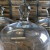 ALaCrateRentals-Glass-Cloche-with-handle-group
