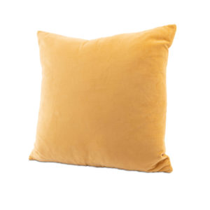Light yellow velvet pillow rental madison wi vintage rentals a la crate event rentals