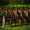 Outdoor ceremony seating rentals, wood chairs